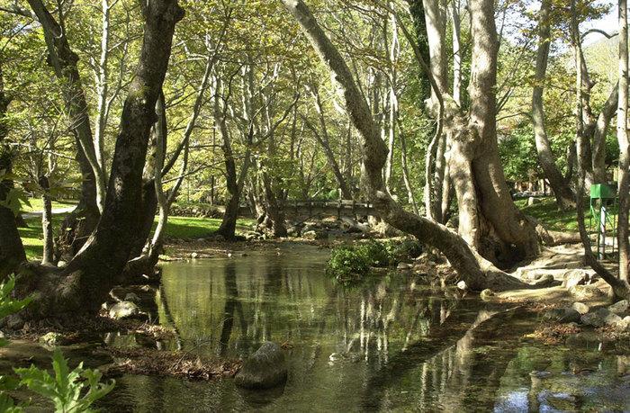Φυσικές ομορφιές: Άλσος Αγίου Νικολάου στη Νάουσα - Ο ποταμός Αράπιτσα [3,5km]